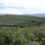 Entorno - 32 (bosques de alrededor)