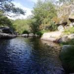 Río Aravalle en uno de sus tramos